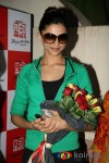 Deepika at KCK Screening