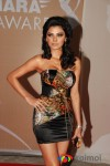 Sherlyn Chopra at IPL Awards
