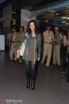 Mallika Sherawat Is Back In India