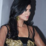 Sizzling Sayali Bhagat Dresses Up
