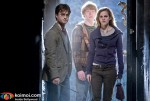 'Harry Potter And The Deathly Hallows: Part 1′ Stills