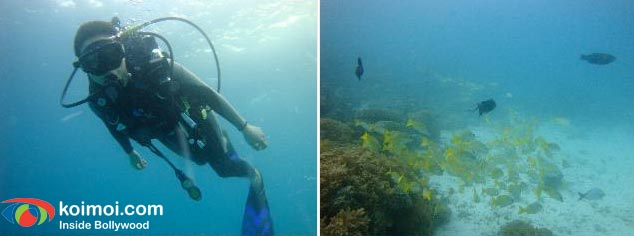 Preity Zinta's Underwater Birthday