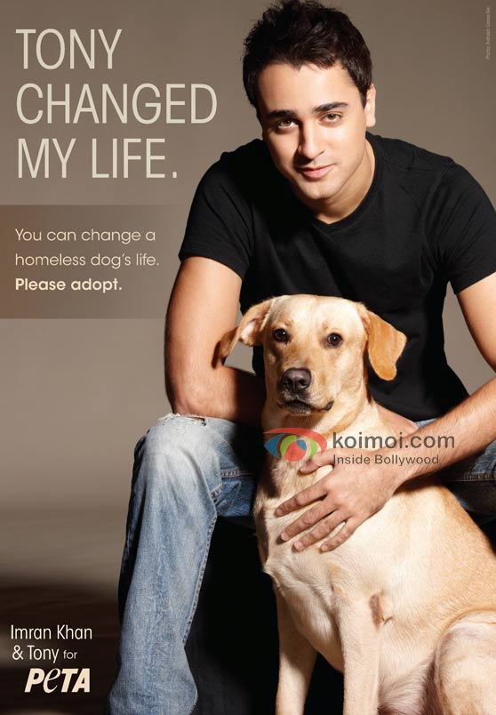 Imran Khan Urges People To Adopt Homeless Dogs (Imran Khan PETA)