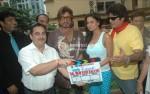 Ali Hassan, Deepak Bali, Irfan Malik, Shakti Kapoor, Veena Malik, Anand Balraj