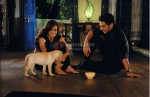Diya Mirza, Zayed Khan (Love Breakups Zindagi Movie Stills)