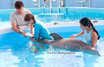 Nathan Gamble (Dolphin Tale Movie Stills)