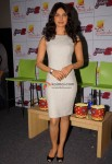 Priyanka Chopra Launches Don 2 Game