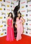 Anjana Sukhani, Vidya Malvade At The '57th Idea Fimfare Awards 2011'