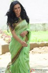 Amy Jackson in a green saree from film Ekk Deewana Tha