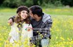 Kangana Ranaut, Ajay Devgan (Tezz Movie Stills)