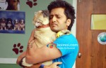 Ritesh Deshmukh (Kyaa Super Kool Hain Hum Movie Stills)