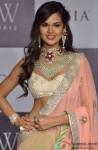 Esha Gupta walks the ramp at India International Jewellry Week (IIJW)