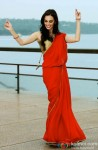 Evelyn Sharma looks hot in red saree