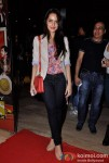 Shazahn Padamsee At Shirin Farhad Ki Toh Nikal Padi Movie Special Screening At Cinemax