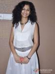 Gauri Shinde On English Vinglish Media Interviews Pic 2