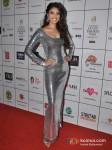 Anushka Ranjan Walks For Varuna D Jani At India Resort Fashion Week 2012 Pic 9