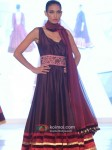 Model Graces Manish Malhotra's Festivel Line Show Pic 4