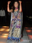 Rashmi Desai At Success Bash Of Television Show 'Uttaran' Pic 3