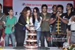 Shama Sikander, Kashmera Shah, Krishna Abhishek And Hanif Hillal In Bruce Lee's Birthday Celebration at Chitah JKD EventBruce Lee's Birthday Celebration at Chitah JKD Event