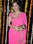 Sophie Choudry At Ekta Kapoor's Diwali Bash Pic 1