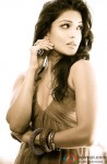 Pallavi Sharda poses sexily for the shutterbugs