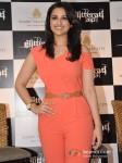 Parineeti Chopra at Aamby Valley Glitterati 2013 Press Meet Pic 3