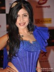 Shibani Kashyap walk the Red Carpet of Big Star Awards Pic 1
