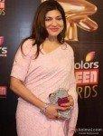 Alka Yagnik at Colors Screen Awards 2013
