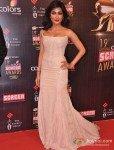 Chitrangada Singh at Colors Screen Awards 2013