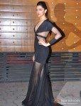 Deepika Padukoner At Walk The Red Carpet Of Filmfare Awards 2013