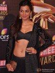 Mugdha Godse at Colors Screen Awards 2013 Pic 2
