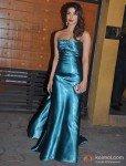 Priyanka Chopra At Walk The Red Carpet Of Filmfare Awards 2013