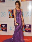 Shazahn Padamsee at Zee Cine Awards 2013 Pic 2
