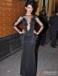 Sonal Chauhan At Walk The Red Carpet Of Filmfare Awards 2013