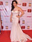 Sophie Choudry At 'Stardust Awards 2013'