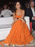 Urmila Matondkar at Worli Festival 2013 Pic 4
