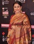 Vidya Balan at Colors Screen Awards 2013