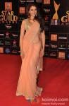 Aditi Rao Hydari Walk The Red Carpet of 'Star Guild Awards' 2013