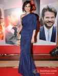 Dia Mirza at 'Hindustan Times Mumbai's Most Stylish 2013' Awards