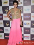 Payal Rohatgi walk the Red Carpet of 'Mirchi Music Awards' 2013