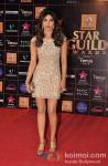 Priyanka Chopra Walk The Red Carpet of 'Star Guild Awards' 2013