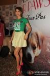 Jacqueline Fernandez unveils PETA campaign at LFW 2013 Pic 4