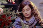 Kangana Ranaut in I Love NY (New Year) Movie Stills Pic 3