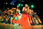 Veena Malik at 'Silk Sakkath Maga' Music Launch Pic 3
