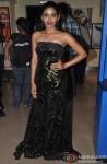 Anjali Patil at Special Screening of Film 'Shree'