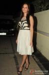 Evelyn Sharma At 'Nautanki Saala' Success Bash Pic 2
