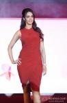 Mallika Sherawat launches 'The Bachelorette India' Pic 4