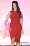 Mallika Sherawat launches 'The Bachelorette India' Pic 2