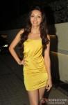 Pooja Salvi At 'Nautanki Saala' Success Bash Pic 1