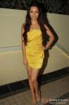 Pooja Salvi At 'Nautanki Saala' Success Bash Pic 2